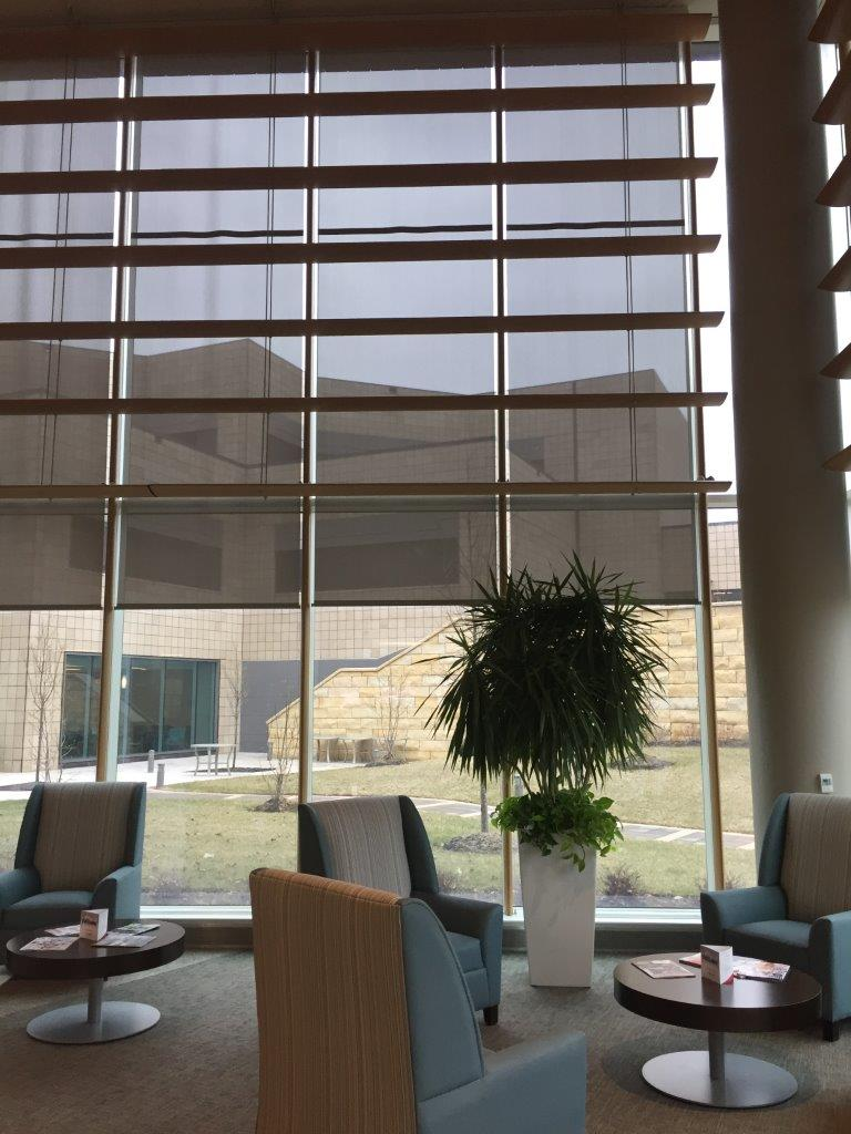 Sheer Weave/Roller Blinds